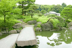 Stone bridge, Japanese pavilion, Pinus thunbergii tree Royalty Free Stock Photos