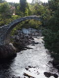 Stone bridge. Old packhorse stone bridge in Carrbridge in August, Scotland, UK Royalty Free Stock Images