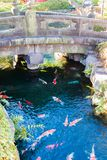 Stone Bridge. A stone bridge over a creek full of colorful koi fish Royalty Free Stock Photos