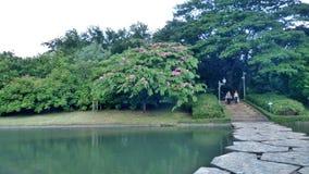 Stone bridge over quiet green lake in the park Stock Photo