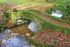Stone bridge. Over a river in Autumn Stock Image