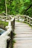 Stone bridge over the river Royalty Free Stock Photos