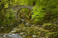 Stone bridge over a river in Northern Ireland. Foley& x27;s Bridge over the Shimna River in Tollymore Forest Park, Northern Ireland stock images