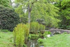 Stone bridge over stream in landscaped english garden Royalty Free Stock Image