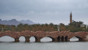 Stone bridge palm trees and mountains background stock footage