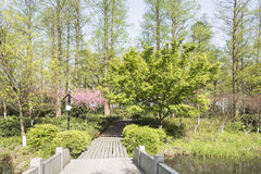 Stone bridge and peach blossom Royalty Free Stock Photos