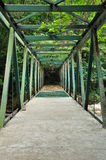 Stone bridge to deep forest Royalty Free Stock Images