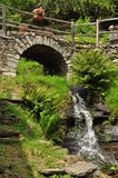 Stone bridge and waterfall with fern plants Royalty Free Stock Photo