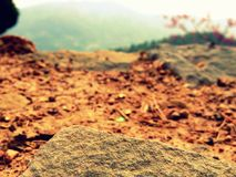 Stone on brown ground Royalty Free Stock Images