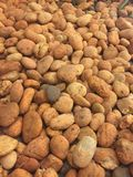 Stone Brown. Many stones piled together Royalty Free Stock Photo