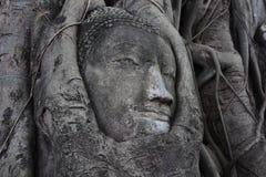 Stone buddha Stock Image