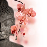 Stone Buddha face and red orchid flower Stock Image