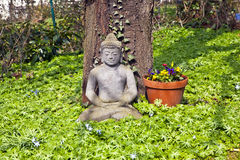 Stone buddha in front of a cherry tree Royalty Free Stock Photo