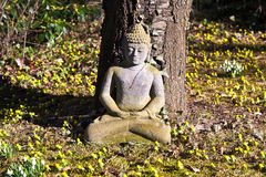 Stone buddha meditation in front Stock Image