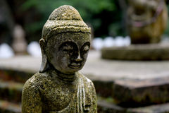 Stone Buddha statue  with moss  close up Stock Photography