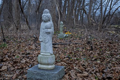 Stone Buddha Statue in the Woods Stock Image