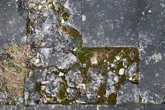 Stone building, covered with moss or lichen.Over time, affected Royalty Free Stock Image