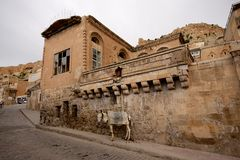 Stone buildings and donkey in Mardin old town in Turkey. Royalty Free Stock Photo