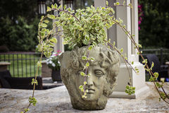 Stone Bust Planter with Carved Statue Face Royalty Free Stock Photo