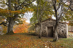 Stone cabin in autumn Stock Photography