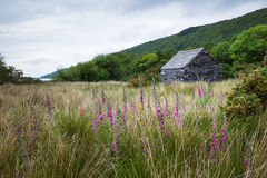 Stone cabin with slate roof in scenic Wales countryside. Llanberis, Gwynedd, Wales, United Kingdom. Beautiful peaceful countryside with Lake in the background Stock Photography