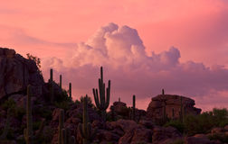 Stone Canyon Sunset. Western sunset under high clouds with thundershower and saguaro cacti Royalty Free Stock Photography
