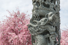 Stone carving Dragon sculpture pole Chinese style Stock Photo
