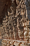 Stone carvings in Varadaraja Temple. India Royalty Free Stock Photo