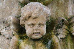 Stone cherub. Badly decayed and discoloured cherub on park fountain royalty free stock photo