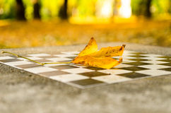 Stone chessboard in the park Stock Photos