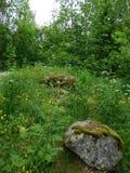 Stone circle of power Stock Image