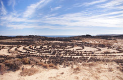Stone circles in Lanzarote. Canary Islands, Spain Stock Image