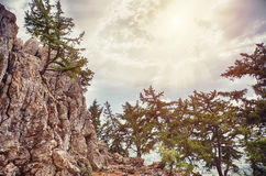 The stone cliff Royalty Free Stock Photos