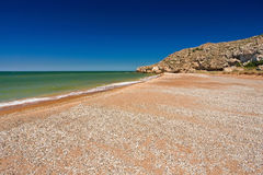 Stone cliff on the sea coast. With shells royalty free stock photos