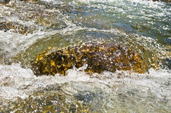 Stone in a cold and fast mountain river on a summer sun, river Trešnjica gorge Stock Image