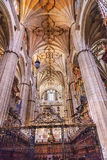 Stone Columns Choir Stalls New Salamanca Cathedral Spain Stock Photos