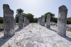 Stone columns at Maya ruins El Rey Royalty Free Stock Photography