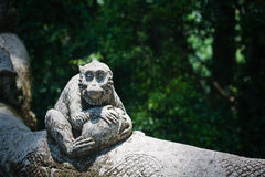 Stone composition in Monkey Forest Royalty Free Stock Photo