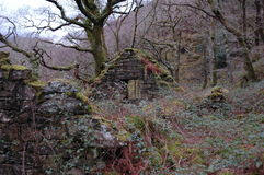 Stone Cottage Ruins Stock Photos
