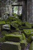 Stone cover with moss. In Ta Prohm, ancient angkor, Seam Reap, Cambodia Stock Images