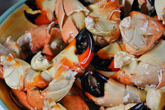 Stone Crab Claws Stock Images