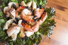 Stone Crab Claws on a Bed of Red Lettuce #2 Stock Images
