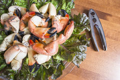 Stone Crab Claws on a Bed of Red Lettuce #3 Stock Photos