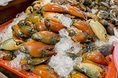 Stone crab claws on ice in Thailand market Stock Photo