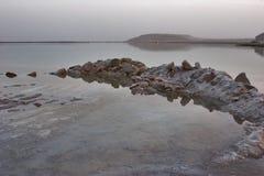 The stone crocodile stock photography