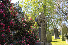 Free Stone Cross And Flowers Cornwall Stock Photos - 40337033