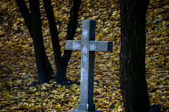 Stone cross. In the autumn nature Royalty Free Stock Photos