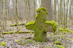Stone cross in a forest. Forest scenery including a mossy overgrown stone cross at early spring time Royalty Free Stock Photography
