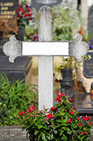 Stone cross in the public cemetery Royalty Free Stock Image