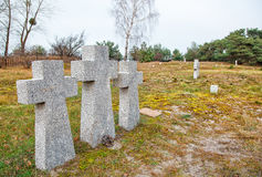 Stone crosses in the old cemetery Stock Image